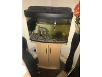 Fish tank and beach stand