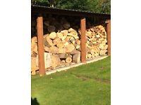 Firewood/Logs, dry seasoned beech/elm