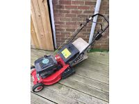 Petrol lawn mower (Ibea)