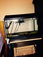 Fish tank for sale for low price!!!