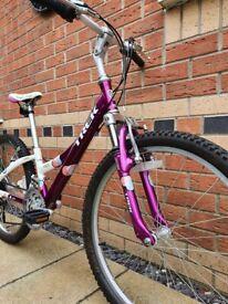 Trek MT220 Child's Bike