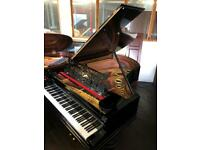 """Bechstein 6""""8 grand fully Restored Free delivery free concert stool"""