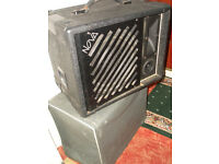 300w-10in PA / INSTRUMENT SPEAKERS