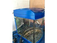 "Aqua Start 320 by Aqua ""One""Aquarium For Sale in Excellent Condition with Heater and Ornament ."