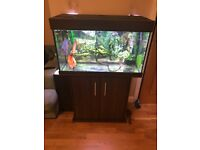 EHEIM FISH TANK 15 X 18 X 32 HEATER , LIGHT AND FILTER FORSALE