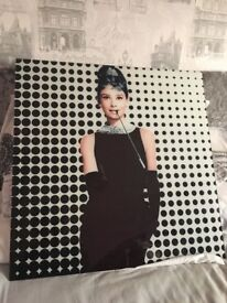 Audrey Hepburn glass wall picture
