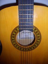 3/4 guitars