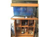 Juwel 180 litre Fish Tank / Aqaurium QUICK SALE