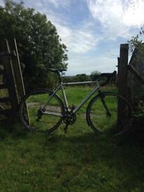 Cannonsale CaadX cyclocross bike 54cm