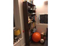 Bookcase/ Bookshelf (Billy Ikea)