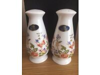 Aynsley Cottage Garden Salt and Pepper pots, boxed, new.