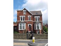 One large double room to rent in this friendly shared house, LS8