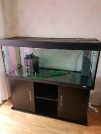 5ft fish tank and stand. Plus 2 filters.