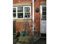 Abru 7 Step Step Ladders
