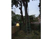 Big Ladder 5.5/6 meters