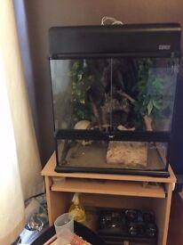 Large reptile vivarium