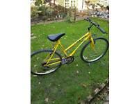 "Full size townsend mountain bike 19"" frame"