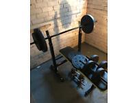 Everlast Weighs n bench