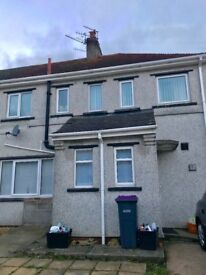 3 bed semi-detached house for sale, extension at back of house, big garden and double drive NP4 7SR