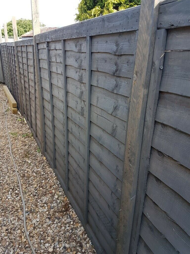 Fence Panels 8 Of Them 5 High X 6 Wide In Bournemouth Dorset Gumtree