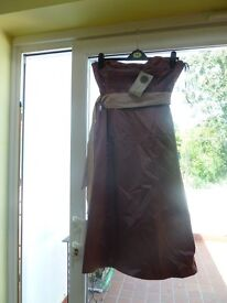 BNWT dress from Coast size 12 - ideal for Prom or Bridesmaid