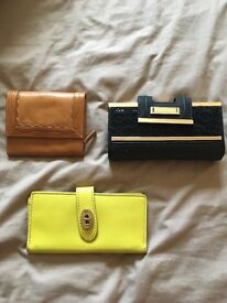 Purses - radley, fossil and river island