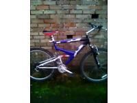 Unisex dual suspension mountain bike