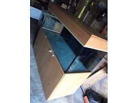 Custom built aquarium 560 litre 5ft 2ft 2ft aqua one jewel fluval + Fluval FX6 canister filter