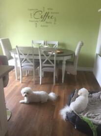 Solid heavy white extendable table and 4 chairs