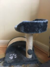Kitten Scratching Post and Toys