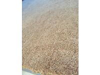 New high quality carpet