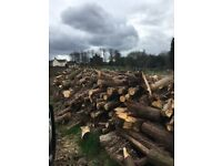 Logs&wood chip for sale