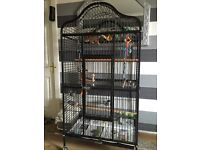 looking too swap this cage for a smaller one