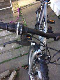 Adults bike for sale