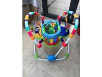 Baby Einstein Musical Jumperoo