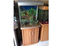 130l Aqua ar 620t fish tank full set up with filter heater 2 light stand gravel ornament all work