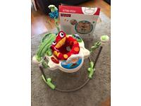 Baby's Fisher Price Rainforest Jumperoo