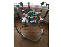 Fisher Price Doscover 'N Grow Jumperoo