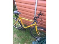 Basic mountain bike pushbike bicycle