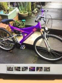 Falcon unisex mountain bike
