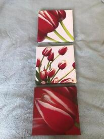 Red Canvas print tulips