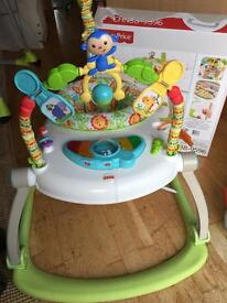Fisher Price rainforest Jumperoo (foldable)