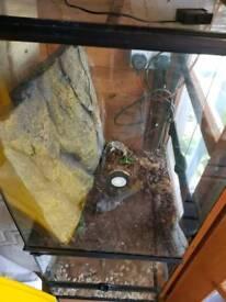 Reptile vivariums and accessories