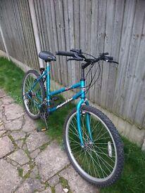 LADIES APPOLLO BICYCLE