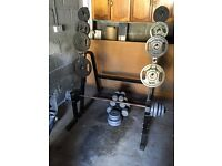 Storage rack with all free weights bar and stuff