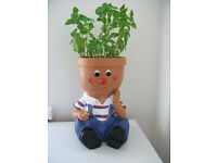 Little boy plant pot brand new