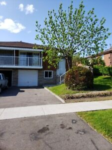 House for Rent- Keele & Sheppard