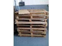 FREE- Wood Palette