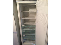 Tall Frigidaire Freezer