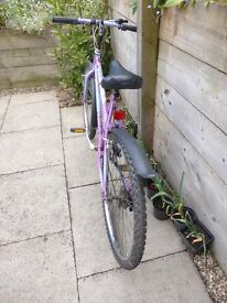 """Girls Raleigh Bike in good condition 18 """" Frame"""